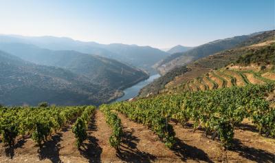 Win een weekendje weg in de Douro Vallei